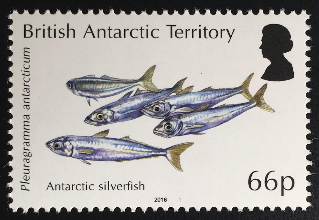 Offen Tokelau 2015 460-463 ** Fische / Fish Mi-nr Mnh